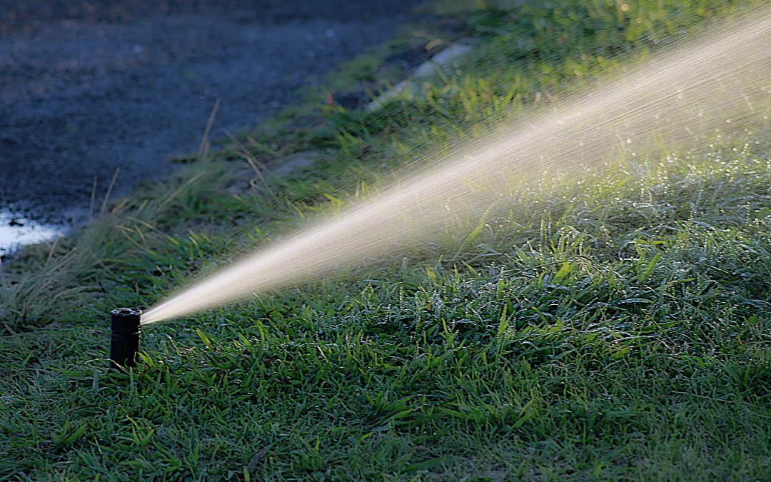 Watering in Colorado Springs